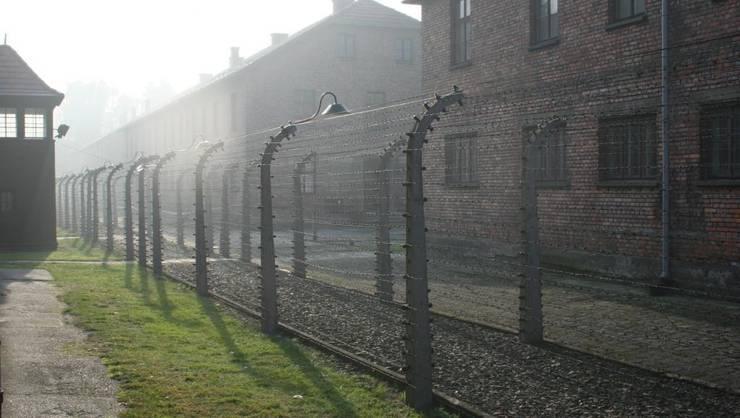 6 milioane de evrei au fost exterminati în al doilea ràzboi mondial din care peste un milion în lagàrul de la Auschwitz-Birkenau