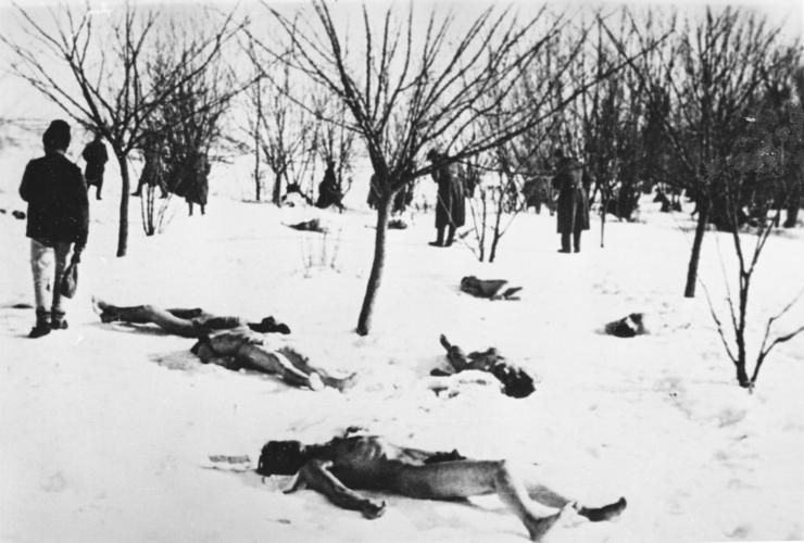 Cadavre de evrei în Pădurea Jilava, ianuarie 1941