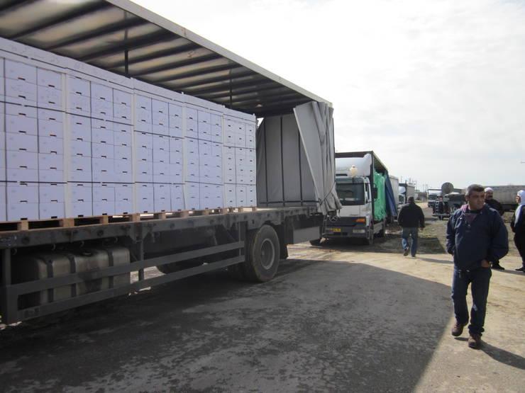 """Eugen Teodorovici spune că verificările se referă la evaziune fiscală și la """"dublul standard"""" al produselor care intră în România"""