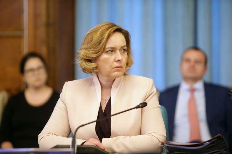 Carmen Dan vrea anchetarea unor manifestanți anti-PSD (Sursa foto: gov.ro)