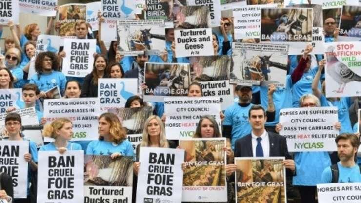 Manifestanti la New York care cer interzicerea foie gras-ului, iunie 20