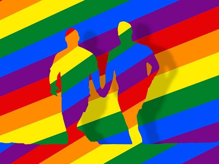 L.Dragnea: referendum privind redefinirea familiei și apoi dezbatere despre legiferarea parteneriatului civil (Sursa foto: pixabay)