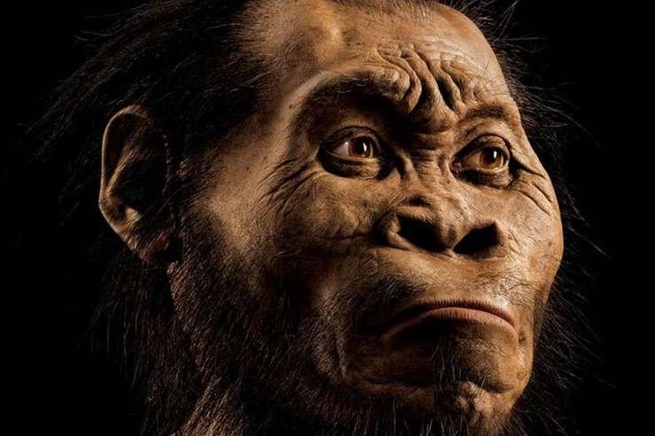 Imagini pentru hominizi