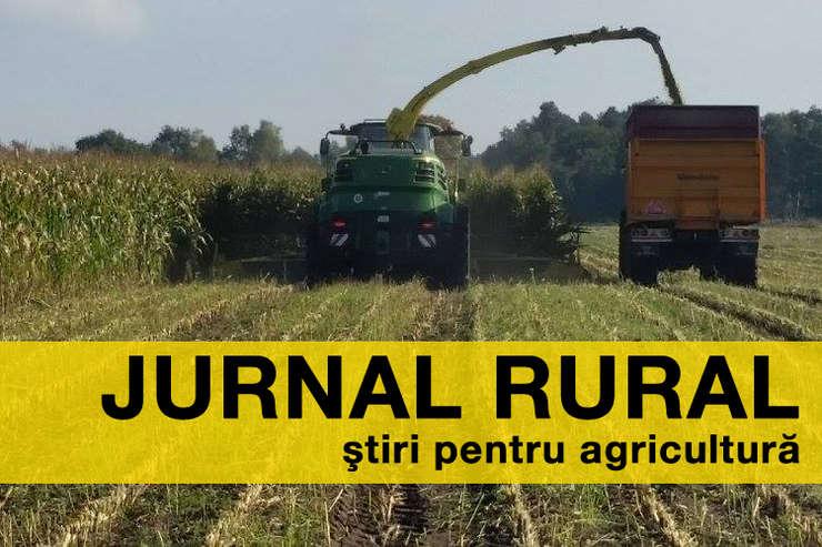 Piața este singura care trebuie să stabilească prețul cerealelor sau altor produse agricole
