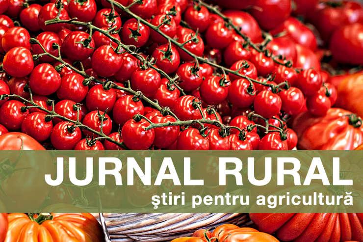"""Cererile pentru plata programului """"sprijin pentru tomate"""" au depășit fondul alocat pentru acest an"""