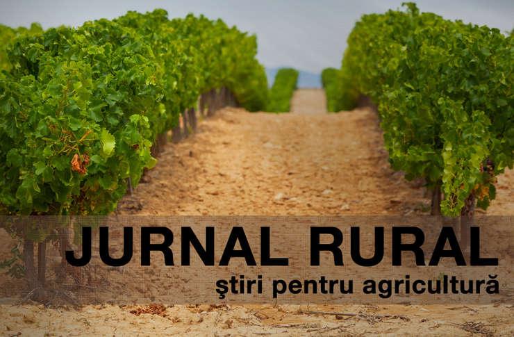 APIA a anunțat că împrumuturile fermierilor sunt garantate în adeverință