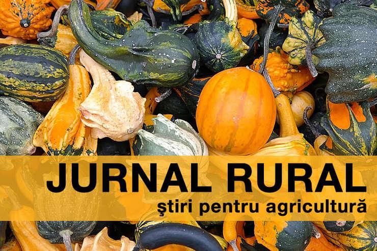 O nouă lege referitoare la regimul terenurilor agricole ar putea apărea în curând