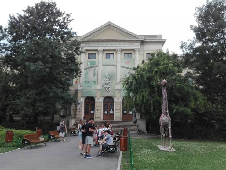 Muzeele sunt închise, din cauza coronavirusului (Foto: RFI/Cosmin Ruscior-ilustrație)