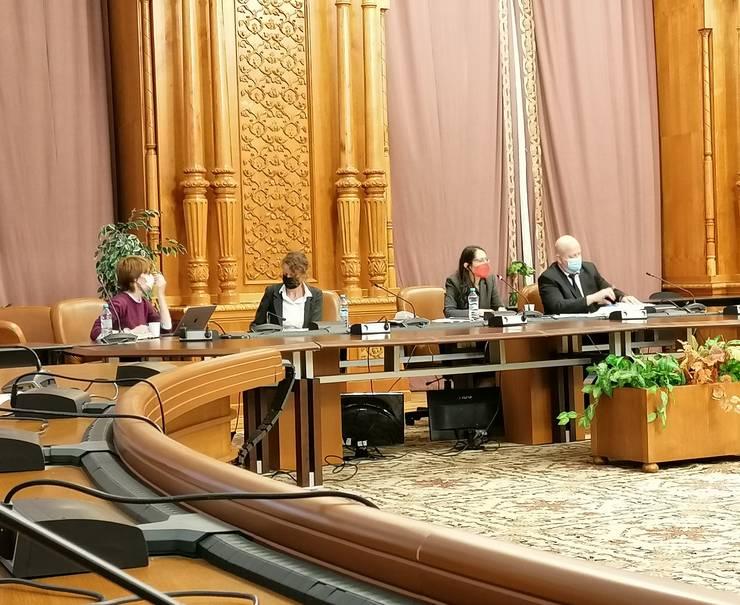 Imagine de la dezbaterea organizată la Parlament de APADOR-CH și ActiveWatch, despre avertizorii de integritate (Sursa foto: RFI/Cosmin Ruscior)