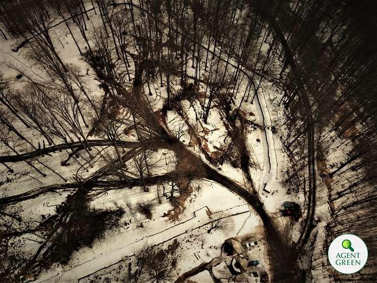 Imagini din dronă, cu arbori tăiaţi aproape de situl Sarmizegetusa Regia (Sursa foto: Agent Green)