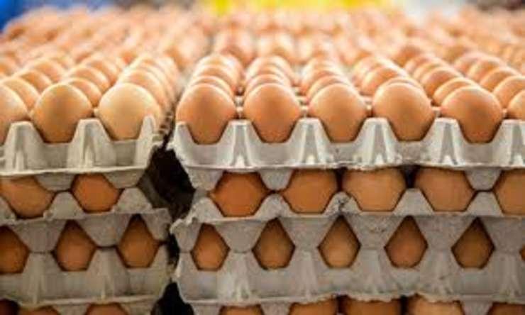 Reuniune de urgență la Bruxelles în scandalul ouălor contaminate