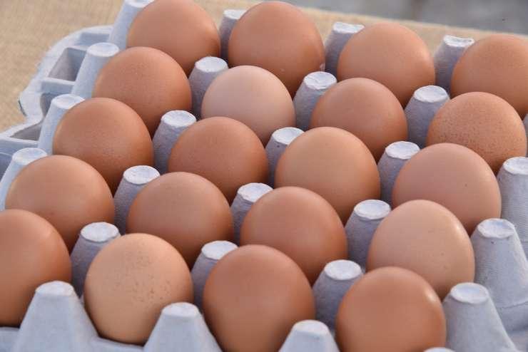 ANSVSA face deja activităţi de control în fermele avicole