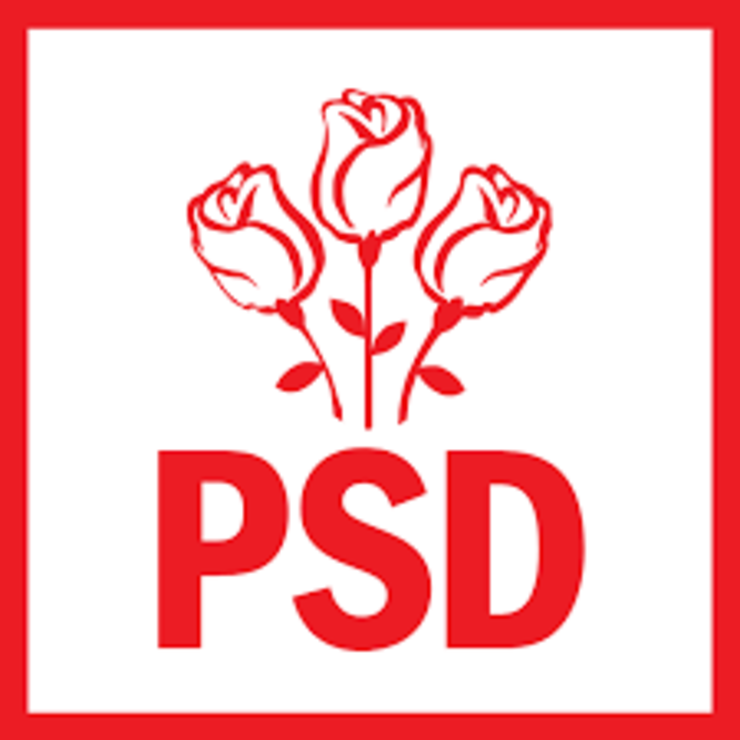 PSD isi reface efectivele parlamentare cu membri PMP