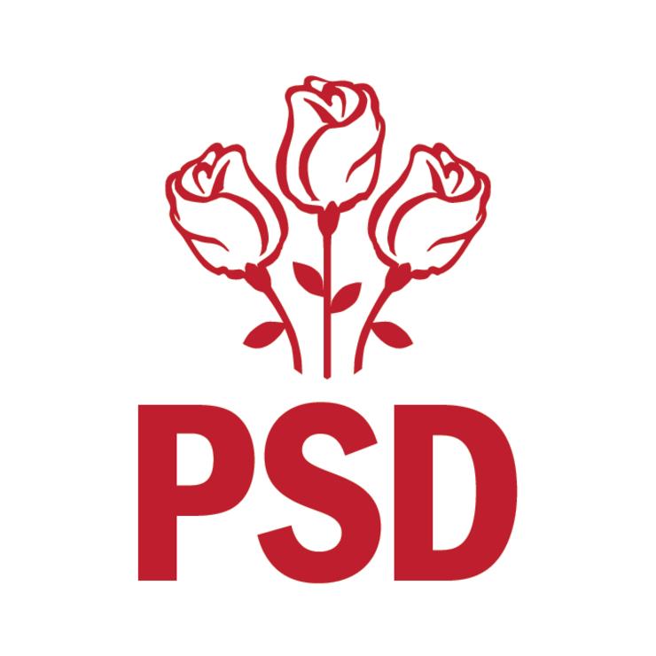 Comitetul Executiv National al PSD se reuneste miercuri, de la ora 18:00, pentru a discuta despre situatia Guvernului, care a ramas fara mai multi ministri.