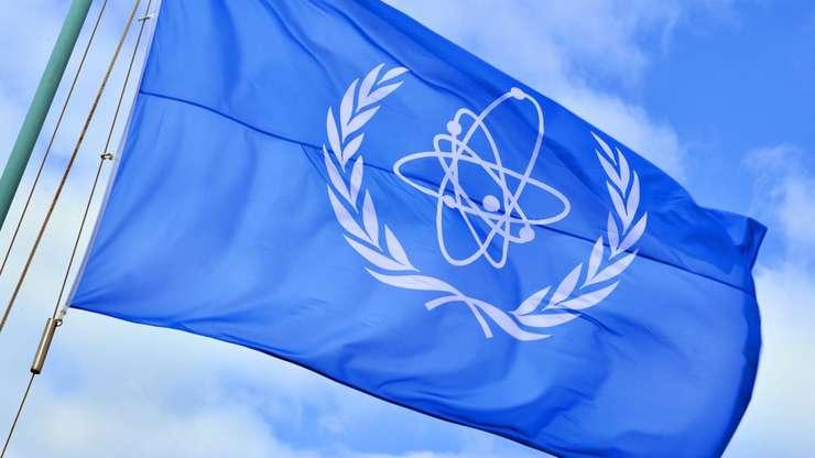 Cornel Feruţă a fost numit director interimar al AIEA (Sursa foto: site AIEA)