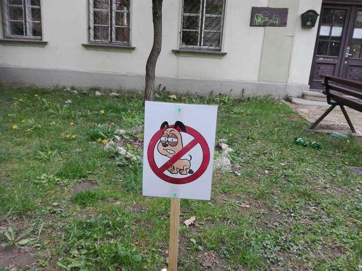 Mizeria lăsată de câini, o problemă acută în București și nu numai (Foto: RFI/Cosmin Ruscior)