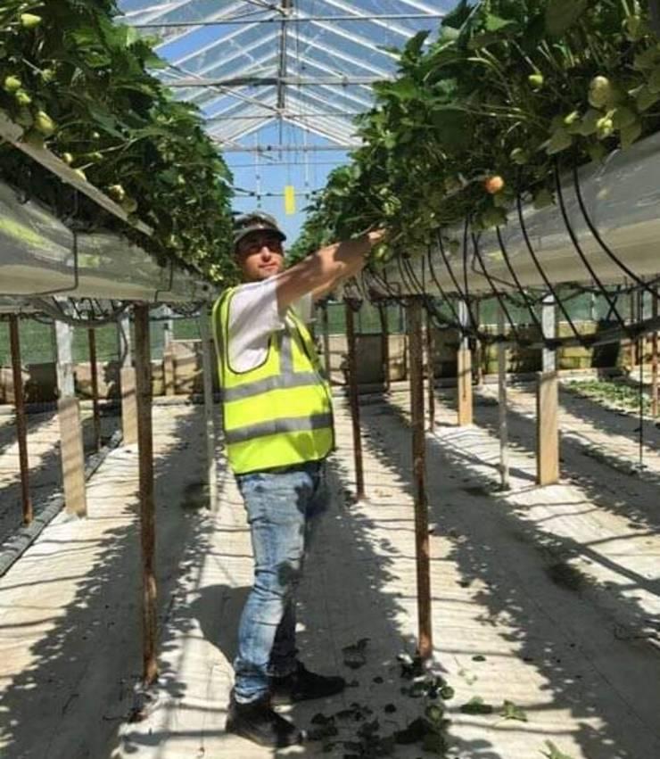 Constantin - muncitor sezonier agricol în Anglia
