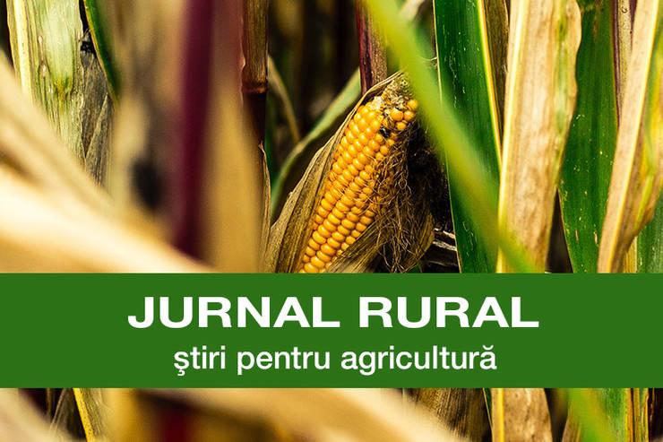 Jurnal rural toamna porumb