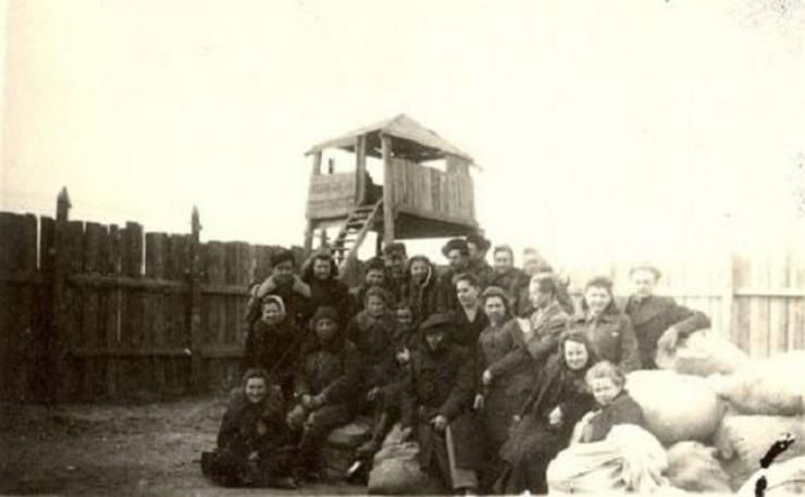 Deportați lituanieni