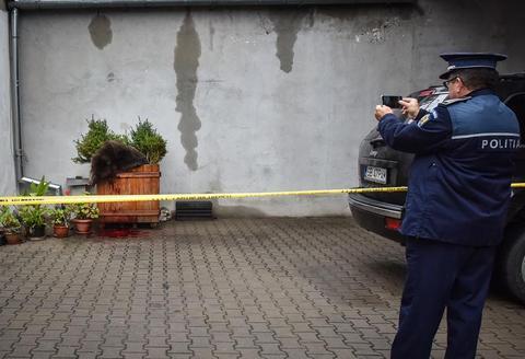 Cum a apărut ursul în Sibiu? Epurescu: S-ar putea să avem surprize. Păun: Reacţia autorităţilor locale, catastrofală