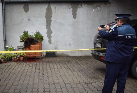 Ministerul Mediului are semne de întrebare privind ursul împuşcat la Sibiu