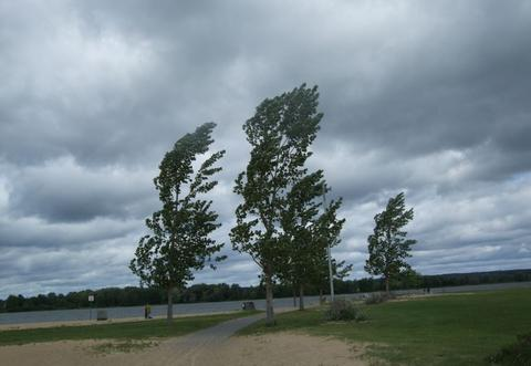 Cod galben de vânt pentru sudul și estul țării