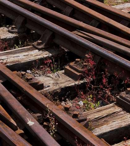 Accident de tren în Ilfov (Sursa foto: pixabay.com)