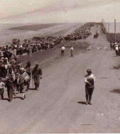 Romi deportați în Transnistria